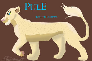 Pule  Nala15 Contest Entry