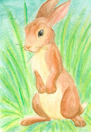 Rabbit ACEO by sapphireluna