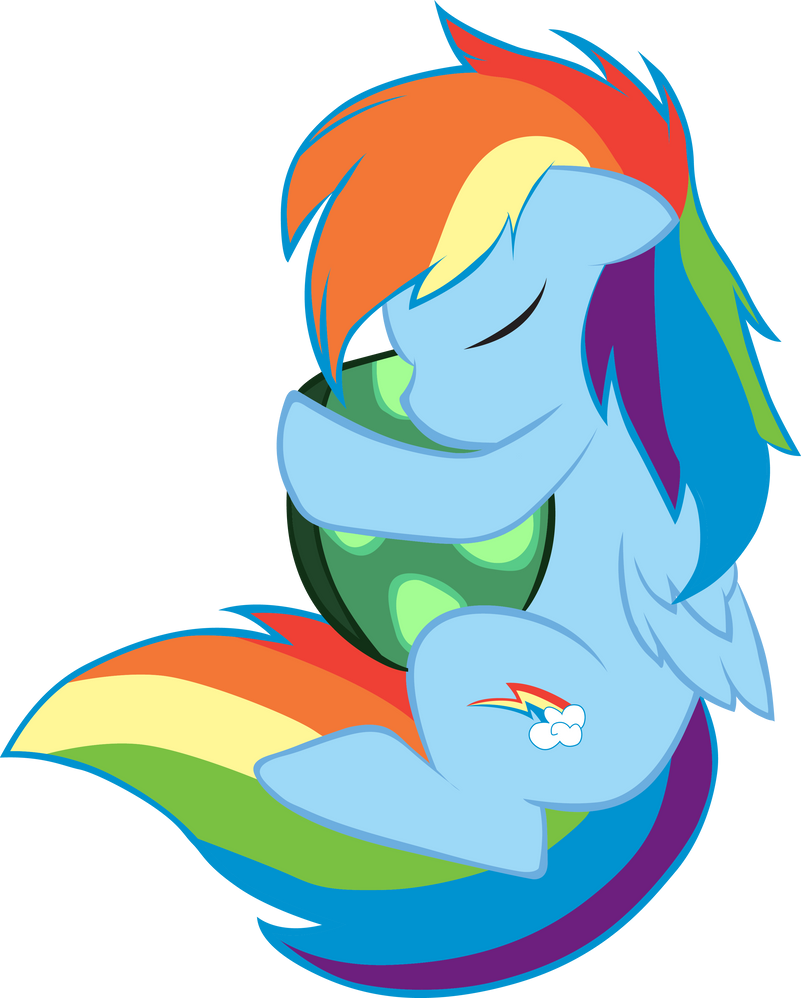 Rainbow Dash and Tank by chald627