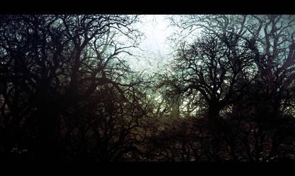 Dark by fxEVo