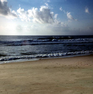 Beach Stock Scene N.2