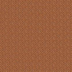 Canvas Texture.1
