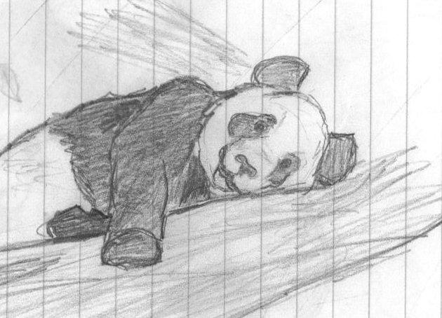 Panda 3 by caitiedidd