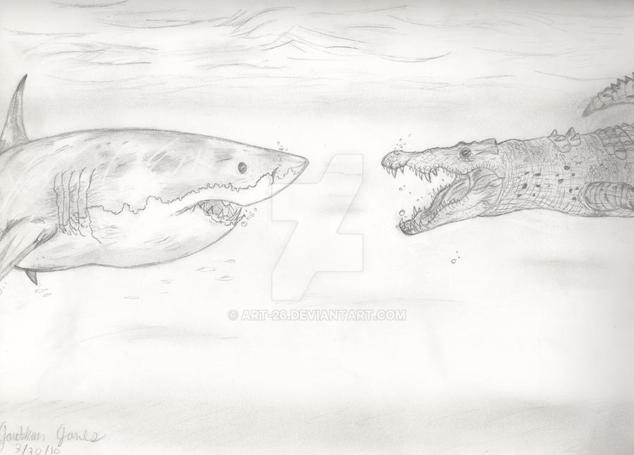 Salt Water Crocodile Vs Great White Shark 73