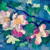 blooming apple tree by takmaj
