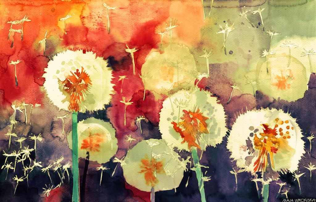 Dandelions by takmaj