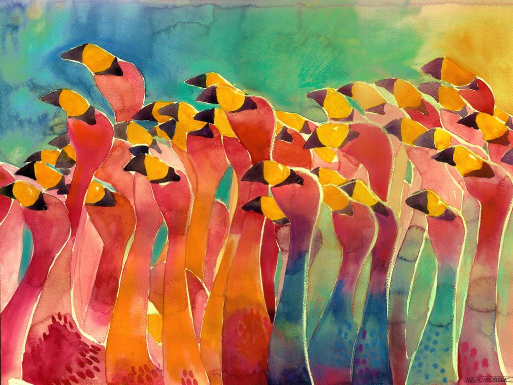 Flamingos by takmaj