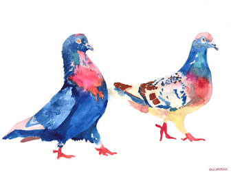 Pigeon Lover by takmaj