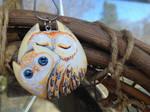 Owl Buddy...with Owlet?