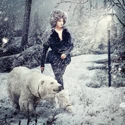 Fairy winter by Danapra