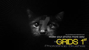 Shades Photoshop Brushes GRIDS 1st