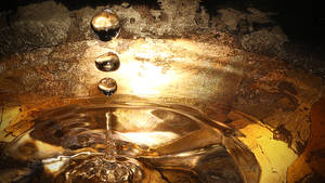 Water Droplet Macro Photo 4