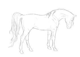Lineart: Arabian by cerona