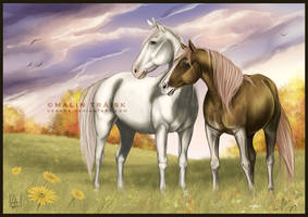 Apollo And Shay by cerona