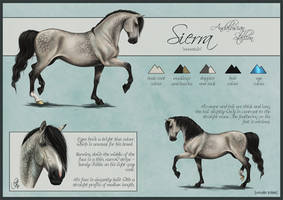 Sierra Reference Sheet by cerona