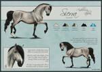 Sierra Reference Sheet