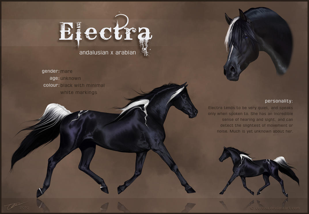 Electra Reference Sheet by cerona