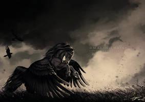Raven Heart by cerona