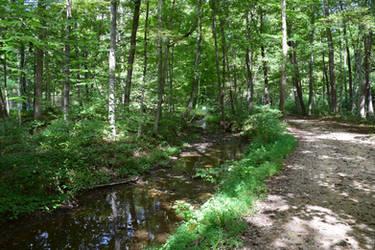Scenic Poop Creek 2