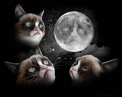 Three Tard Moon by GaryckArntzen