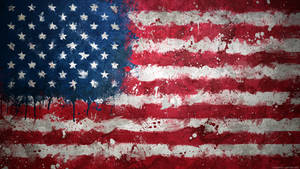 United States of America -Mgn Flag Collection 2013