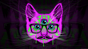 Meow wallpaper by GaryckArntzen