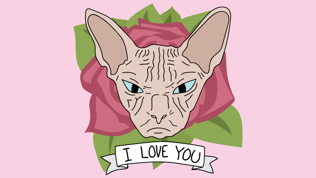 Sphynx Cat Loves You Wallpaper by WalidSodki