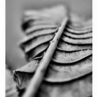 Waves. by Sandrita-87