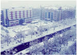 The sheer white town