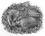 The wolf cub's nest... by Mad-Margaret