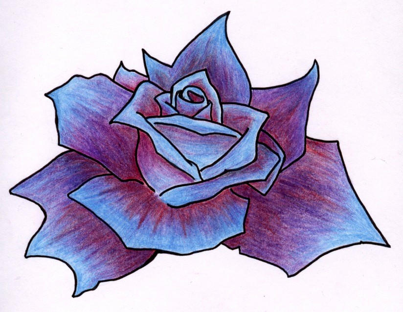 Rose, cold and vibrant - flower tattoo