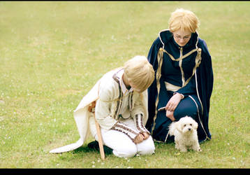 APH - Sweden and Finland 2 by Amapolchen