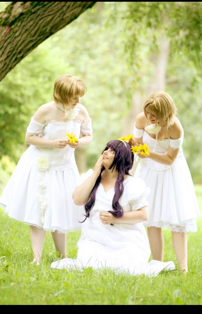 TRC: Sakura, Tomoyo and Sakura by Amapolchen