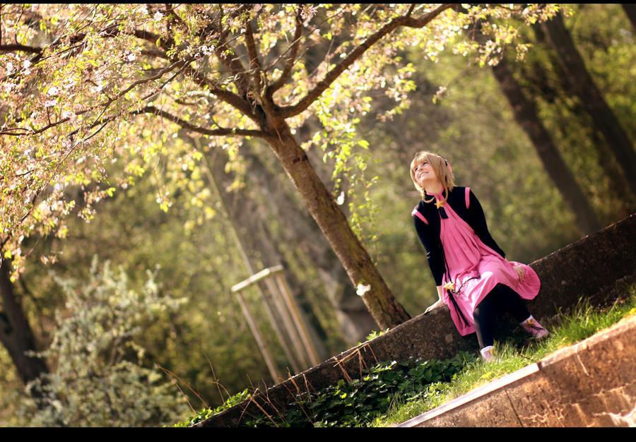 CCS: Sakura 22 by Amapolchen