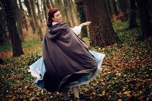 Belle 5 by Amapolchen