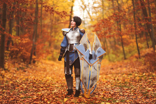 The Dragon Prince Cosplay : General Amaya