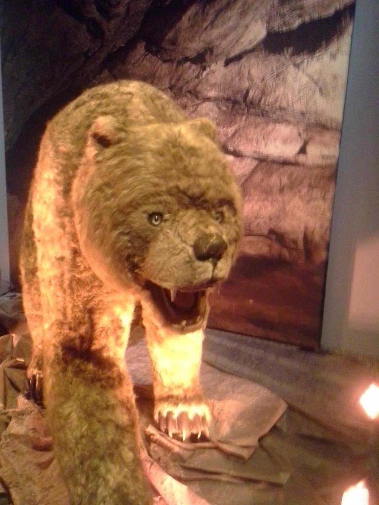 Derp Bear by SonofChinglu