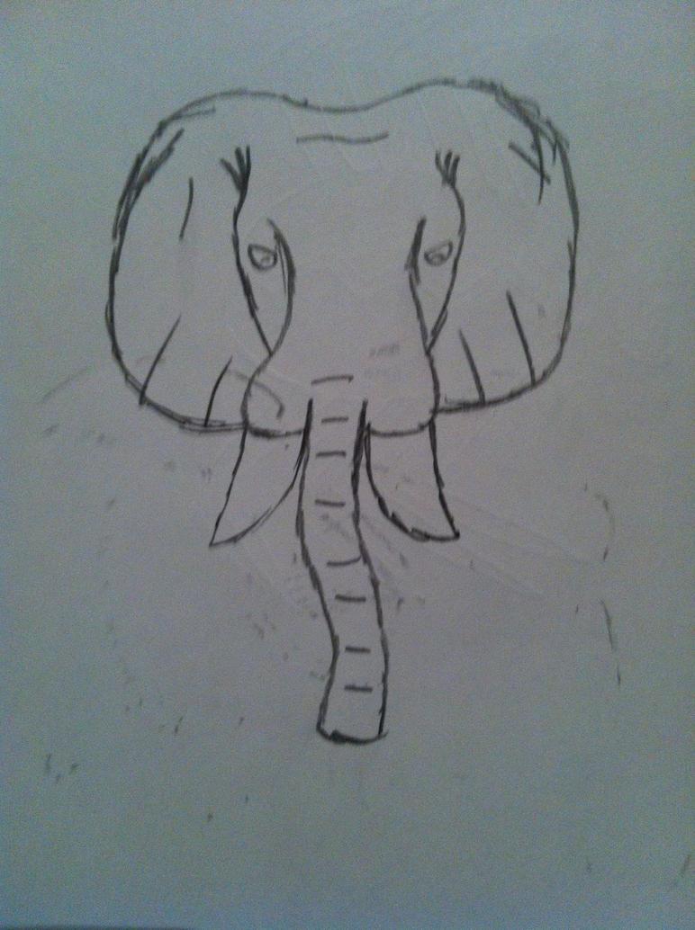 Elephant by lucanelsonspratt