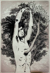 hombre arbol - La memoria de los arboles