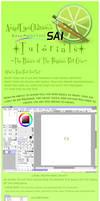 Basics of Paint Tool Sai Pt 1