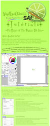 Basics of Paint Tool Sai Pt 1 by Neko-CosmicKitty