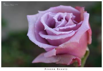 Frozen Beauty by QueenNola