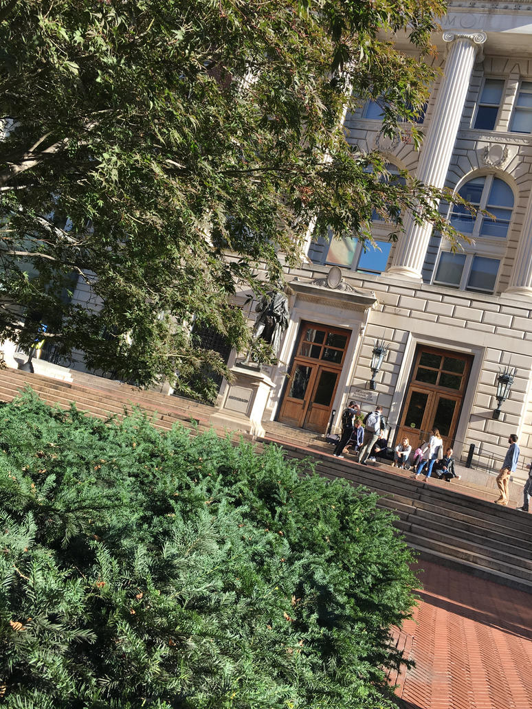 columbia university speed dating study Speed dating let researchers look at a lot of mate choices in a short time, todd said in the study, participants were asked before the session to fill out a questionnaire about what they were looking for in a mate, listing such categories as wealth and status, family commitment, physical appearance, healthiness and attractiveness.