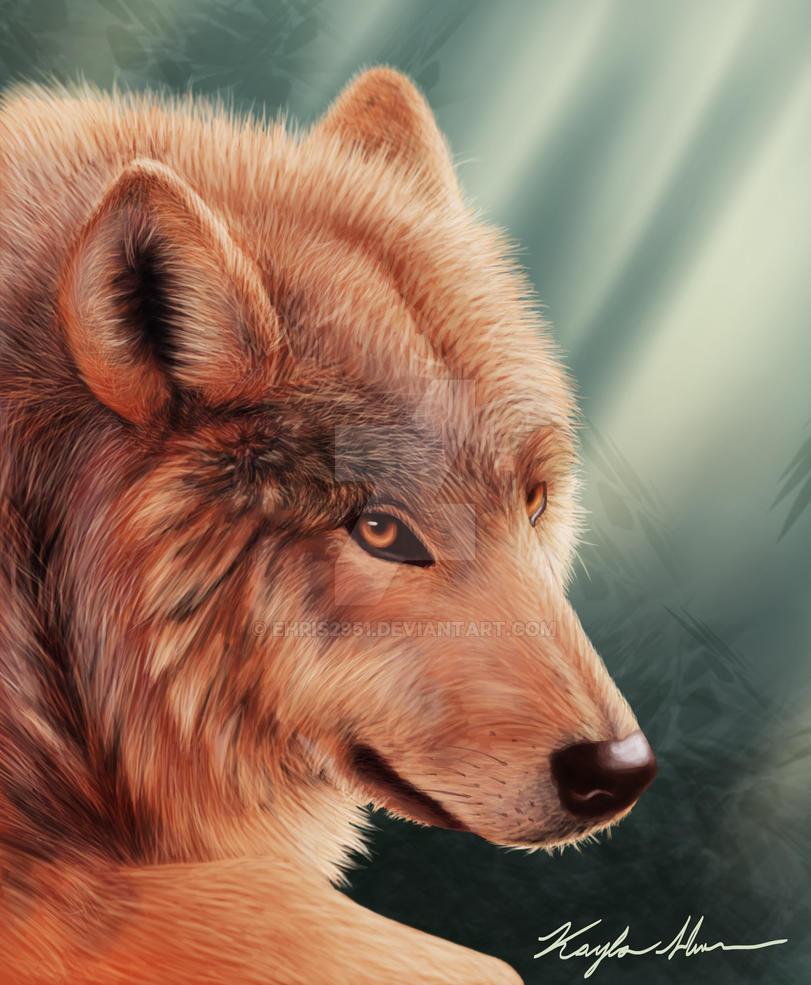 Howl by Ehris2951