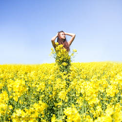 Yellow Tale. by ann-ko