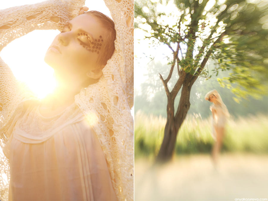 Golden morning by ann-ko