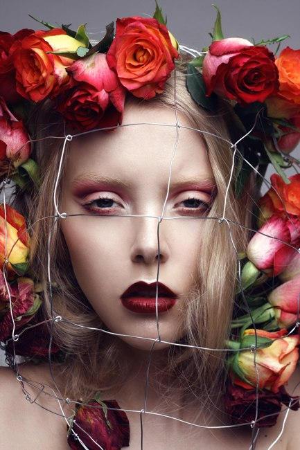 Rose by Anya Kozyreva