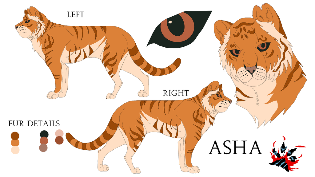 Asha Reference Sheet by Black-Tiger-of-Evil