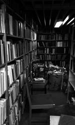 The Bookstore by Avarquare
