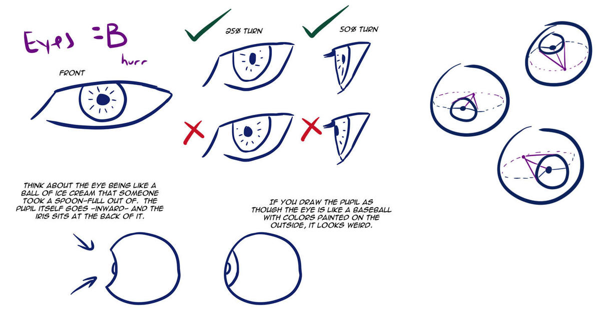 Eye Anatomy for Artists by KoltirasRip on DeviantArt